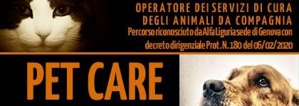Banner pet care